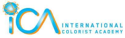 Apply for two courses : Colorist Strategies and Advanced Color Design