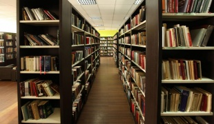Petar Kočić library