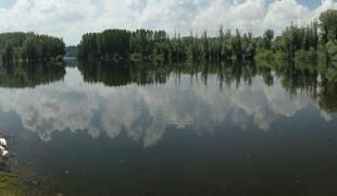 Channel near Bač New Village