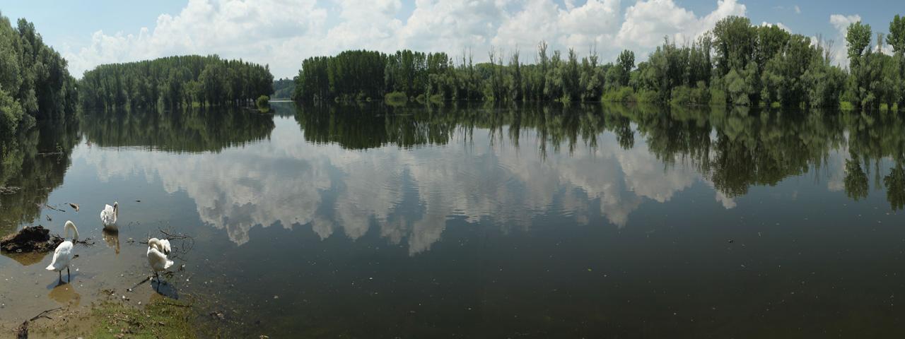 Canal near Bačko Novo Selo