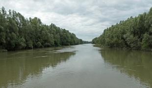Danube in Apatin