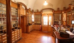 The Town Museum of Vršac