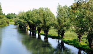 Eco Zone Karas