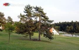 "The Education Center ""Čardak"""