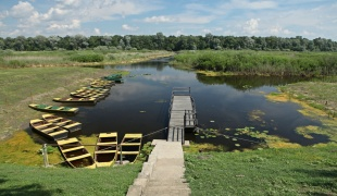 Obedska Pond