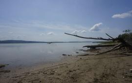 Deliblato Sands