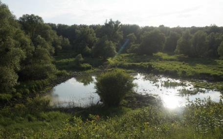 """Special Nature Reserve """"Gornje Podunavlje"""""""