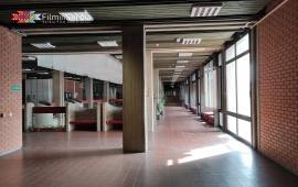 Faculty of Philosophy in Novi Sad